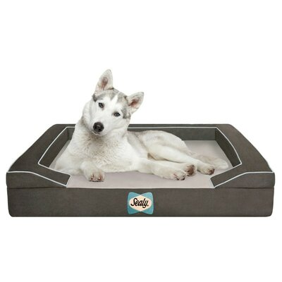 Sealy Lux Bolster Dog Bed Size: Large (42 L x 32 W), Color: Max-Gray