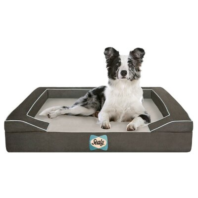 Sealy Lux Bolster Dog Bed Size: Medium (36 L x 28 W), Color: Max-Gray