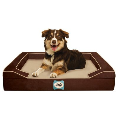 Sealy Lux Bolster Dog Bed Size: Medium (36 L x 28 W), Color: Bella-Brown