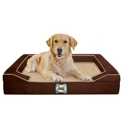 Sealy Lux Bolster Dog Bed Size: Large (42 L x 32 W), Color: Bella-Brown