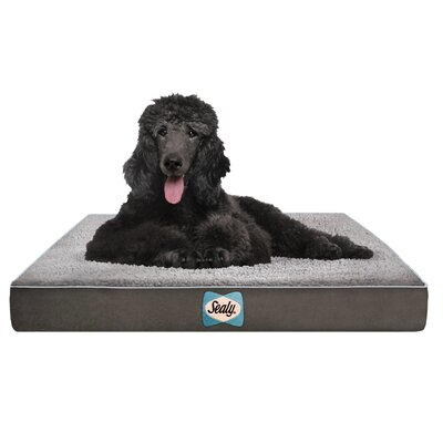 Supreme Sherpa Dog Bed Color: Modern Gray, Size: Medium