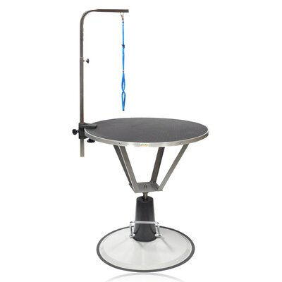 Hydraulic Dog Grooming Table with Arm Size: 30.75 - 36.25 H x 35.5 W x 35.5 D