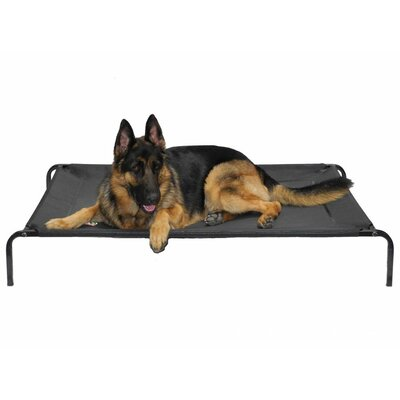 Elevated Cooling Cot Pet Bed Size: Large (44 L x 28 W)