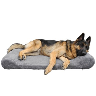 Orthopedic Dog Bed Lounger Size: 6 H x 24 W x 34 L, Color: Gray