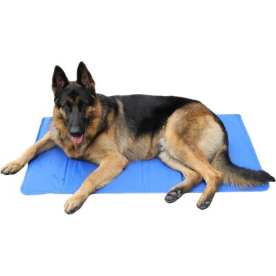 Gel Pad Dog Bed Size: Medium (35.4 L x 23.6 W)