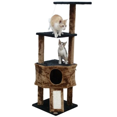 46 Kitten Cat Tree Color: Black/Brown