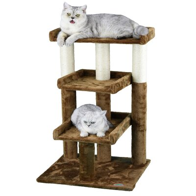 35 Cat Tree Color: Brown