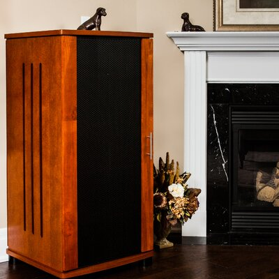 LSX Series 52 Audio Cabinet Color: Walnut