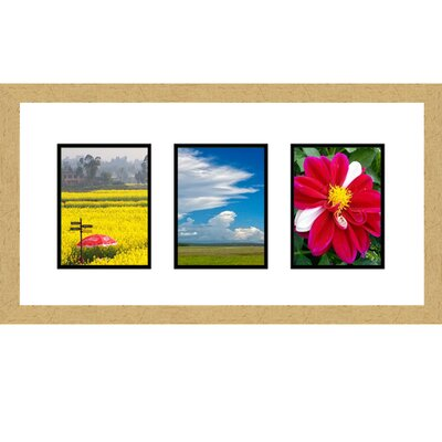 3 Opening Collage Picture Frame Color: Gold