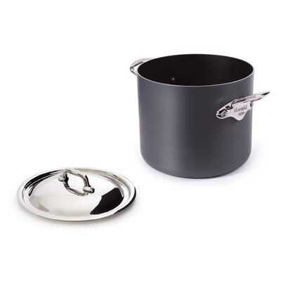 Mstone2 Stock Pot With Lid