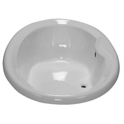 72 x 41 Drop-In Bathtub Finish: White