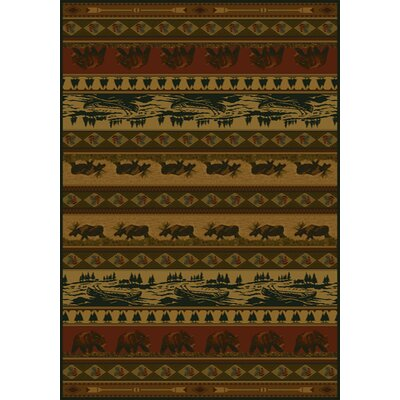 Marshfield Kodiak Island Novelty Area Rug Rug Size: 311 x 53
