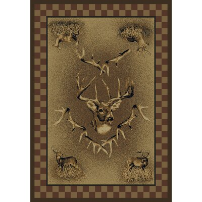 Marshfield Whitetail Ridge Novelty Area Rug Rug Size: 53 x 76