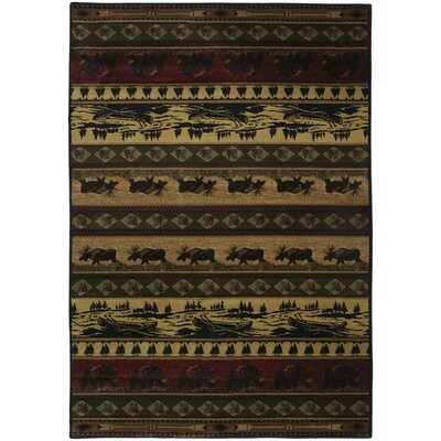 Marshfield Kodiak Island Novelty Area Rug Rug Size: Runner 111 x 74