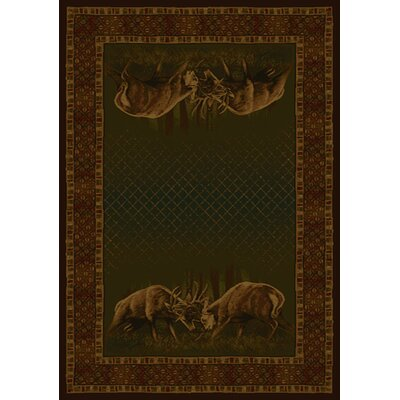 Buckwear Winner Takes All Lodge Green and Brown Novelty Rug Rug Size: 710 x 106