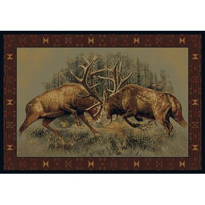 Buckwear Fight For Dominance Lodge Brown Novelty Rug Rug Size: 710 x 106