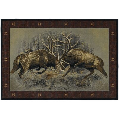 Buckwear Fight For Dominance Lodge Brown Novelty Rug Rug Size: 53 x 76