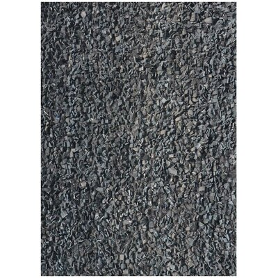 Art Leather Area Rug Rug Size: 6 x 9