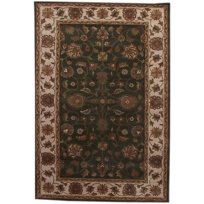 Aaryan Green/Cream Area Rug Rug Size: 5 x 8