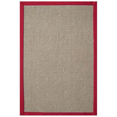 Sisal Natural/Red Rug Rug Size: Rectangle 5 x 8