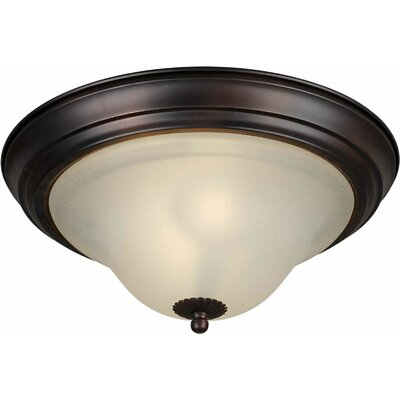 Energy Efficient 2-Light Flush Mount Size: 13.25 H x 6 W