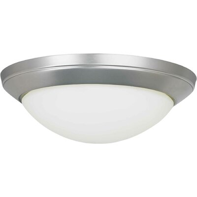 Functional 2-Light Flush Mount