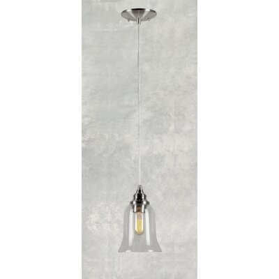 Du Bois Cord-Hung 1-Light Mini Pendant with Clear Glass Shade