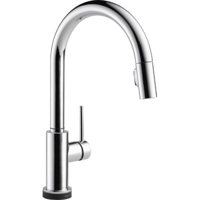 Trinsic� Kitchen Single Handle Pull Down Standard Kitchen Faucet Finish: Chrome