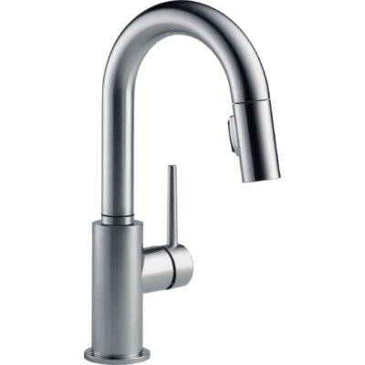 Trinsic� Kitchen Single Handle Pull-Down Bar Faucet Finish: Arctic Stainless