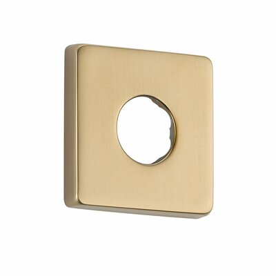 Shower Arm Flange Finish: Brilliance Champagne Bronze