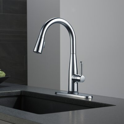 Essa Single Handle Pull Down Standard Kitchen Faucet with Touch2O Finish: Arctic Stainless