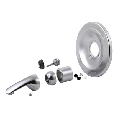 600 Series Tub and Shower Renovation Kit Finish: Brilliance Stainless