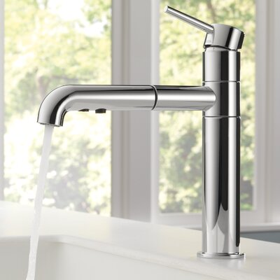 Trinsic� Standard Pull Out Single Handle Kitchen Faucet Finish: Chrome