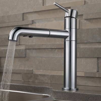 Trinsic� Kitchen Single Handle Pull Out Standard Kitchen Faucet Finish: Arctic Stainless