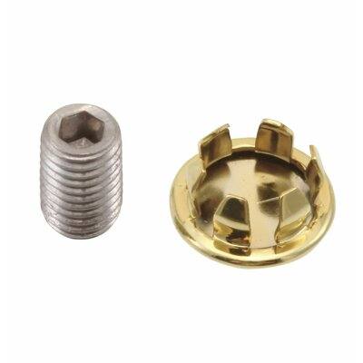 Replacement Plug Button and Screw Finish: Brilliance Polished Brass
