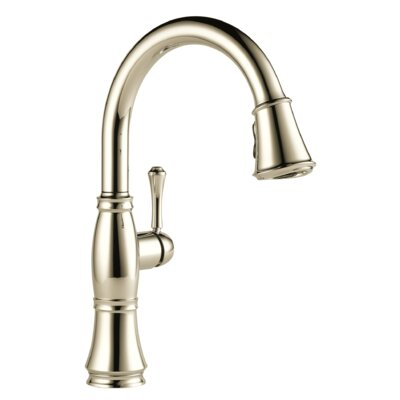 Cassidy Pull Down Touch Single Handle Kitchen Faucet