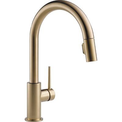 Trinsic� Kitchen Pull Down Single Handle Kitchen Faucet Finish: Brilliance Champagne Bronze