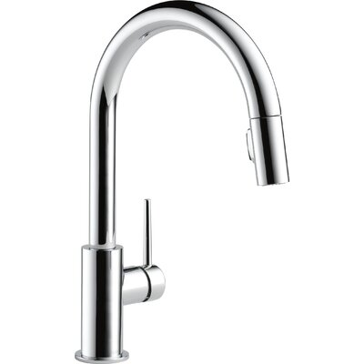 Trinsic� Kitchen Pull Down Single Handle Kitchen Faucet Finish: Chrome
