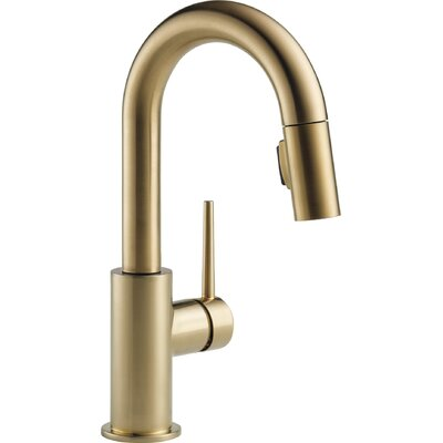 Trinsic� Kitchen Pull Down Bar Faucet Finish: Brilliance Champagne Bronze