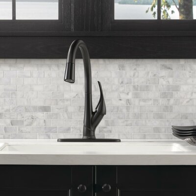 Esque Single Handle Pull Down Kitchen Faucet with Touch2O Technology Finish: Matte Black