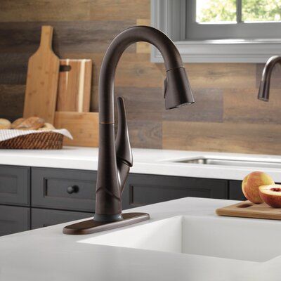 Esque Single Handle Pull Down Kitchen Faucet with Touch2O Technology Finish: Venetian Bronze