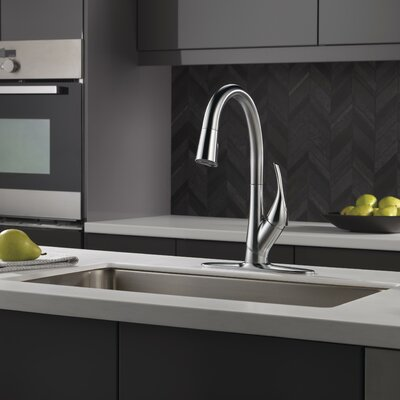 Esque Single Handle Pull Down Kitchen Faucet Finish: Arctic Stainless