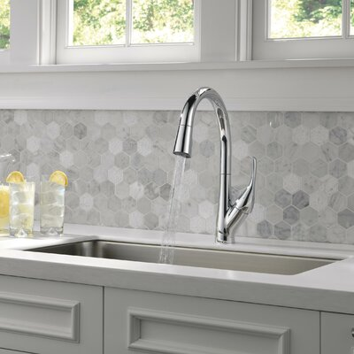 Esque Single Handle Pull Down Kitchen Faucet Finish: Chrome