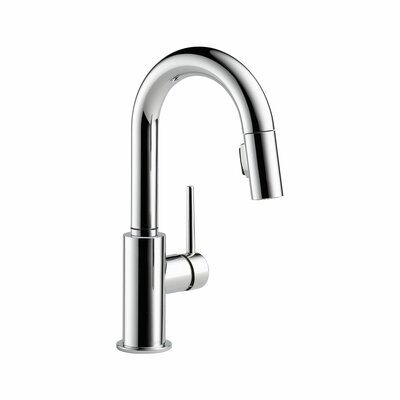 Trinsic� Kitchen Single Handle Pull-Down Bar Faucet Finish: Chrome