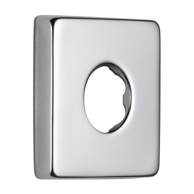 Shower Arm Flange Finish: Brilliance Stainless