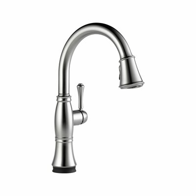 Cassidy Single Handle Standard Kitchen Faucet Finish: Arctic Stainless