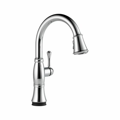 Cassidy Single Handle Standard Kitchen Faucet Finish: Chrome