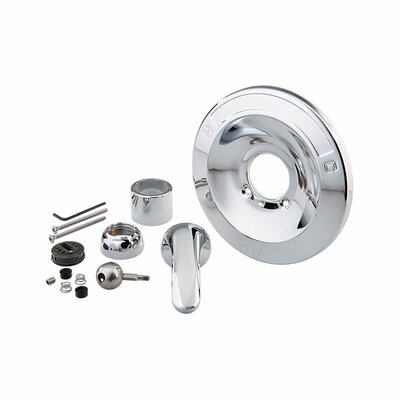 600 Series Tub and Shower Renovation Kit Finish: Chrome