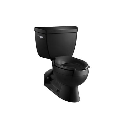 Barrington Two-Piece Elongated 1.6 GPF Toilet with Pressure Lite Flushing Technology and Left-Hand Trip Lever Finish: Black Black