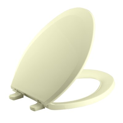 Lustra with Quick-Release Hinges Elongated Toilet Seat Finish: Sunlight